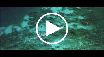 image vidéo Mole Saint-Nicolas - Haïti (4 vidéos)