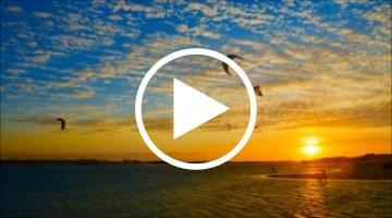 image vidéo Galinhos - Brésil (2 vidéos)